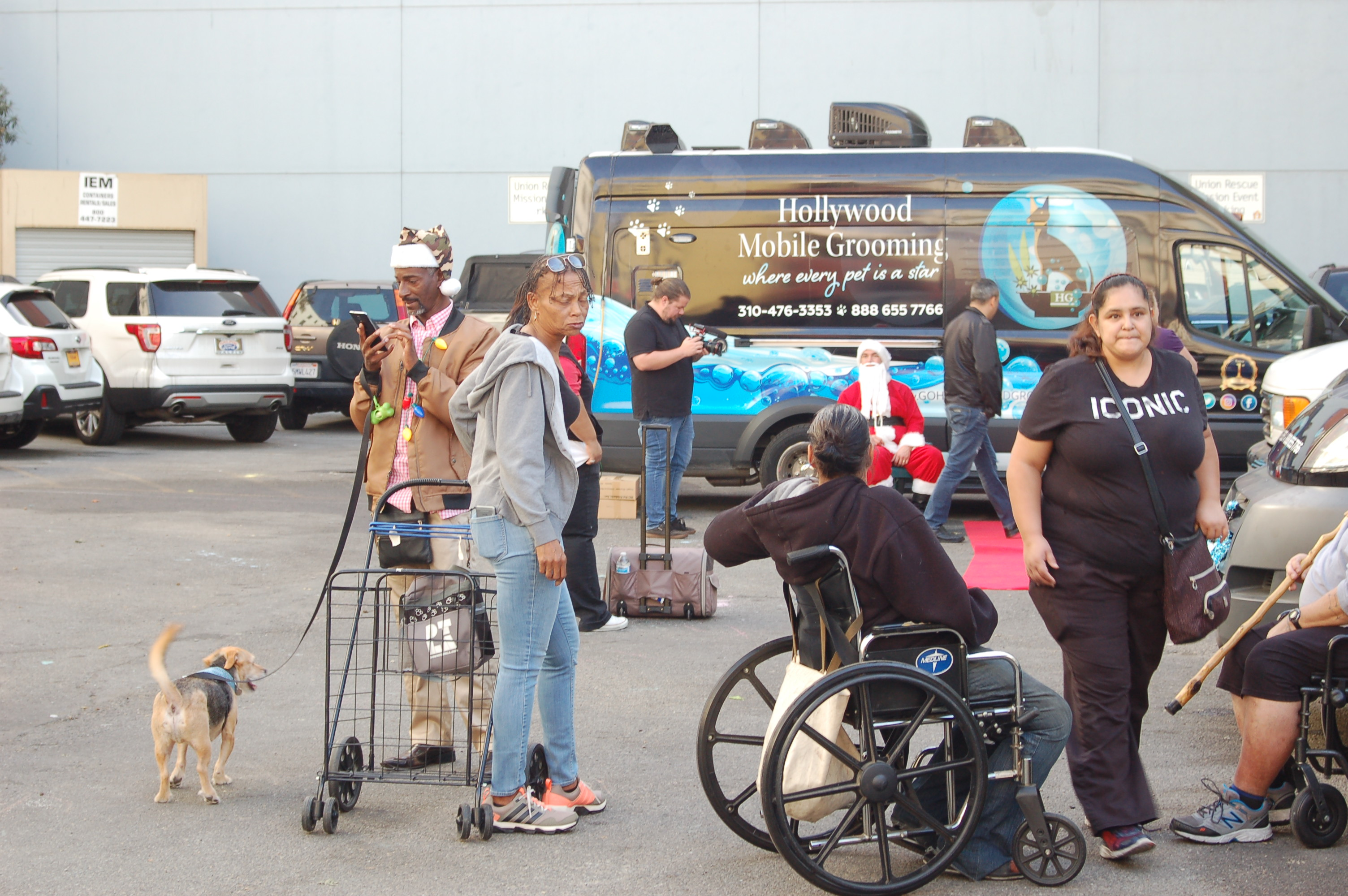 Hollywood Grooming working with animal rescue and advocacy organizations.