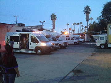 The Go Hollywood Grooming Vans lined up outside.
