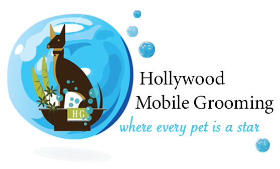 Go Hollywood Grooming